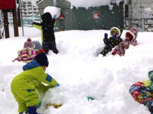 H29-01-16_平成29年1月16日 雪遊び 4